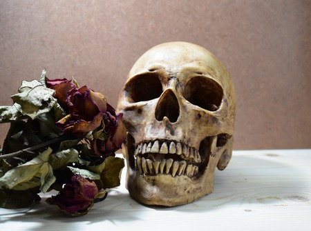corpse flower: Still life with human skull and dry roes flowers, love style Stock Photo