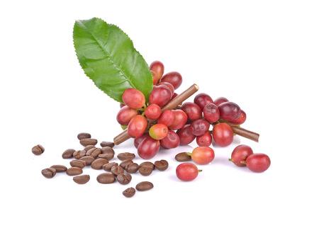 koffiebonen en bladeren op witte achtergrond