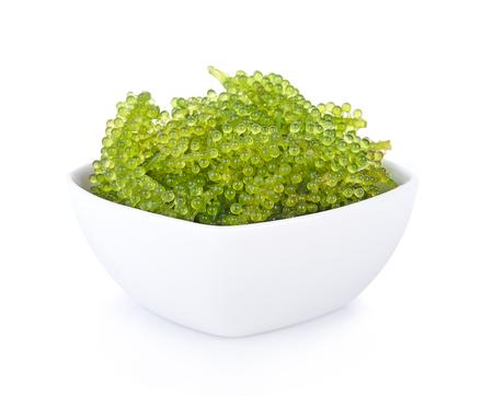 Overzees druiven (groene kaviaar) zeewier op witte achtergrond