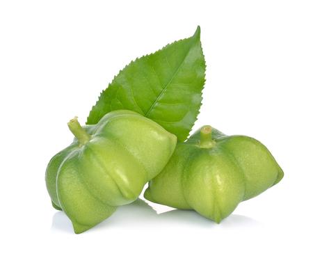 Plukenetia volubilis, sacha inchi, sacha peanut on white background.