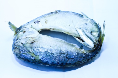 Steamed Mackerels
