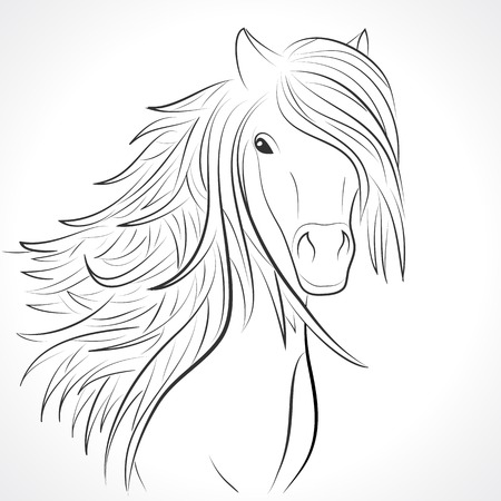 Sketch of horse head with flying mane on white background. Vector illustration for your animal background. Beautiful, thick and rich hair of horse. Vector