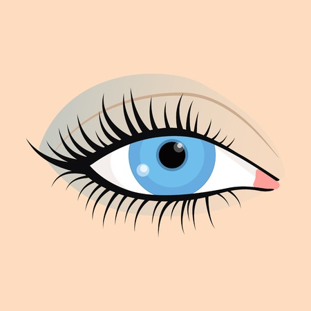 lash: Open emale eyes image with beautifully fashion make up. Vector illustration for health glamour design. Blue color. Elegant woman eyes. Illustration