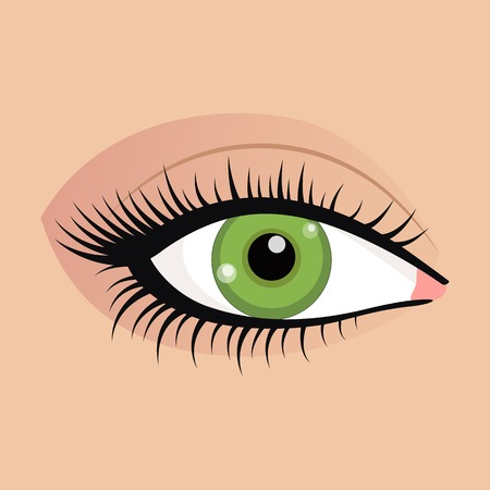 beautifully: Open emale eyes image with beautifully fashion make up.  illustration for health glamour design. Green colors. Elegant woman eyes.