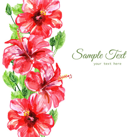 red hibiscus flower: Frame from red watercolor Hibiscus flowers. Illustration isolated on white background. Colorful floral collection with leaves and flowers, hand drawn. Spring or summer design for invitation, wedding or greeting cards. Stock Photo
