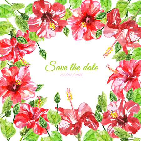 isolated flower: Frame from red watercolor Hibiscus flowers. Illustration isolated on white background. Colorful floral collection with leaves and flowers, hand drawn. Spring or summer design for invitation, wedding or greeting cards. Stock Photo