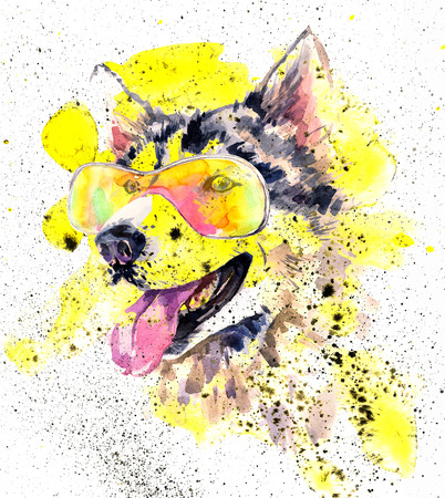 head wise: Watercolor siberian husky dog in cool sun glasses and bright yellow splashes. Stock Photo