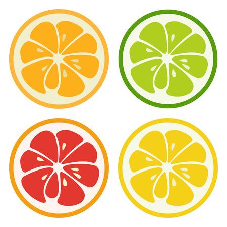 Kinds of citrus fruits. Lemon, lime, orange and grapefruit isolated on white background. Fresh tasty healthy fruits.
