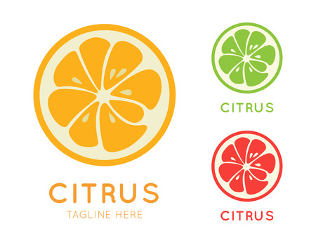 Kinds of citrus logo. Logotype for citrus company. Refreshing yummy tropical summer fruit. Cocktail ingredient. Vector design illustration