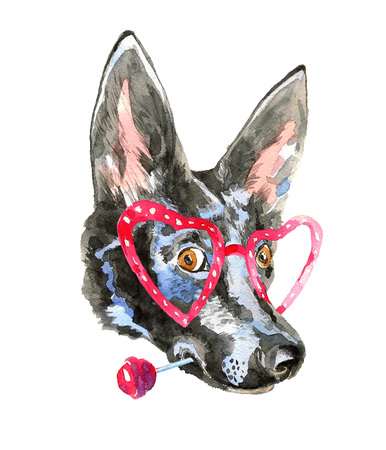 dog ears: Close up portrait of cheerful watercolor dog isolated on white background with colorful splashes. Doberman puppy with  long ears holds lollipop. For posters, invitation and greeting cards, t-shirts. Stock Photo