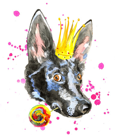 dog ears: Portrait of watercolor dog isolated on white background with crown on the head. Doberman puppy with  long ears holds lollipop. For posters, invitation cards, t-shirts. Stock Photo