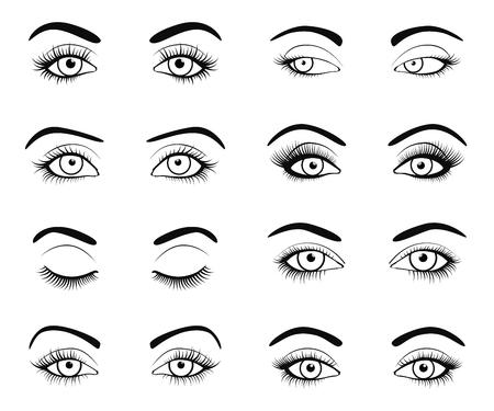 sexo femenino: Establecer imagen ojos y las cejas femenina con las pestañas de la moda maravillosamente de. Ilustración del vector para el diseño del encanto de la salud. colores blanco y negro. Cerrar y abrir los ojos de la mujer.