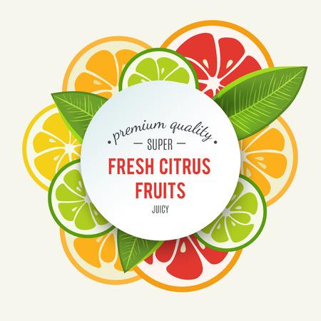 Banner con agrumi stilizzato e spruzzi. Pompelmo, lime, limone e arancia. Citrus mix isolato su sfondo bianco può essere utilizzato per la progettazione menu bar. Luminoso ed elegante icona del design succosa. Vettore