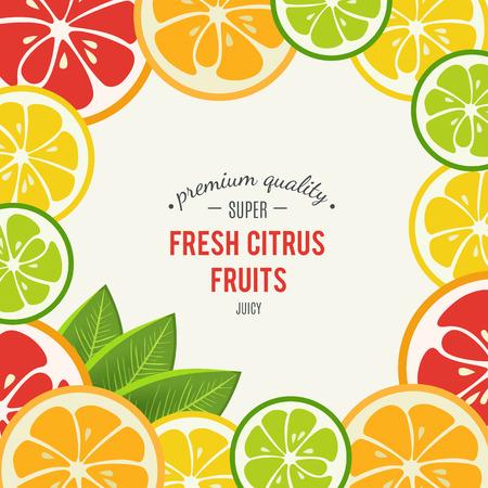 Grapefruit, Limette, Zitrone Und Orange Mit Minze Auf Weißem ...