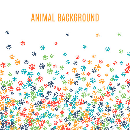 Colorful animal footprint ornament border isolated on white background. Vector illustration for animal design. Random foot prints below. Many bright trail. Frame of cute paw trace. World wildlife day