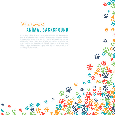 animal frames: Colorful animal footprint ornament border isolated on white background. Vector illustration for animal design. Random foot prints corner. Many bright trail. Frame of cute paw trace. World wildlife day