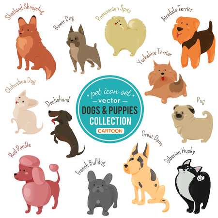 Vector dogs and puppies depicting different fur color and breeds walking, siting and standing on white background.