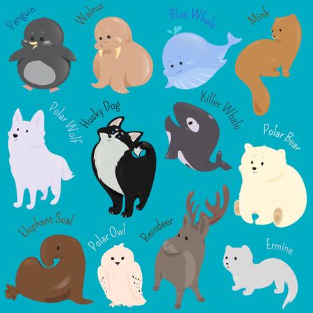 gronostaj: Set of cute cartoon winter north animal icon. Ilustracja