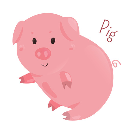 animal species: Pig. Genus Sus, Suidae of even-toed ungulates. Related creatures peccary, babirusa, warthog. Part of series of cartoon home animal species. Domestic pets. Sticker for kids. Child fun icon. Vector