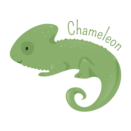 animal species: Chameleon isolated on white. Chamaeleons family Chamaeleonidae. Clade of old world lizards. Part of series of cartoon savannah animal species. Sticker for kids. Child fun pattern icon. Vector