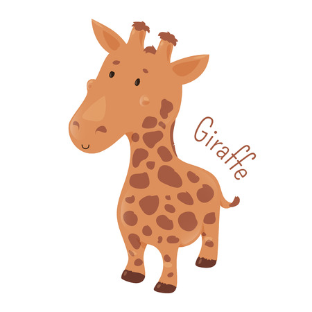 largest: Giraffe isolated. Giraffa camelopardalis. African even-toed ungulate mammal, the tallest terrestrial and largest ruminant. Part of series of cartoon savannah animal species. Child fun icon. Vector Illustration
