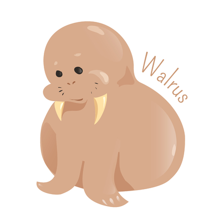 sea creature: Walrus isolated on white background. Only living species in the family Odobenidae. Part of series of cartoon sea creature species. Marine animals. Sticker for kids. Child fun pattern icon. Vector Illustration