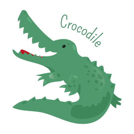 animal species: Crocodile isolated. Crocodylinae. Large aquatic reptiles living in Africa, Asia, America and Australia. Part of series of cartoon savannah animal species. Sticker for kids. Child fun icon. Vector
