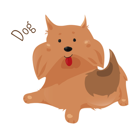 animal species: Dog isolated on white background. Canis lupus familiaris. Domesticated canid. Doggy. Part of series of cartoon home animal species. Domestic pets. Sticker for kids. Child fun icon. Vector