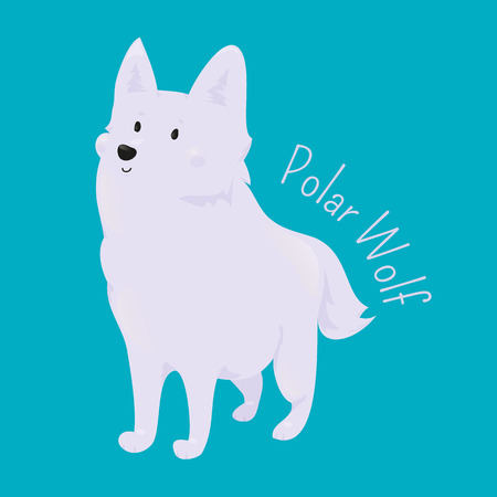 animal species: Polar Wolf isolated on blue. Arctic or Melville Island. White coloration, narrow braincase, and large carnassials. Part of series of cartoon northern animal species. Child fun pattern icon. Vector Illustration