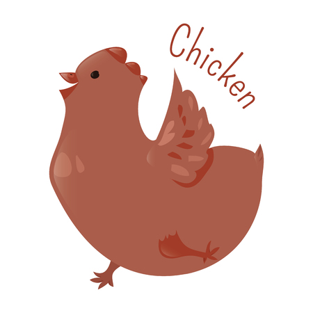 subspecies: Chicken isolated. Gallus domesticus. Type of domesticated fowl, subspecies of red junglefowl. Part of series of cartoon home animal species. Domestic pets. Sticker for kids. Child fun icon. Vector