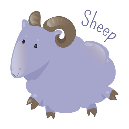 ruminant: Sheep isolated. Ovis aries. Quadrupedal, ruminant mammal typically kept as livestock. Part of series of cartoon home animal species. Domestic pets. Sticker for kids. Child fun icon. Vector Illustration