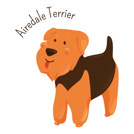 dog isolated: Airedale Terrier isolated on white background. Bingley and Waterside dog. Medium-length black and tan coat. Domesticated canid. Part of series of cartoon puppy species. Child fun pattern icon. Vector