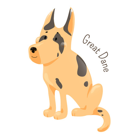 dane: Great Dane isolated. Large breed of domestic dog known for giant size. Deutsche Dogge. German Mastiff. Dogue Allemand. Part of series of cartoon puppy species. Child fun pattern icon. Vector Illustration