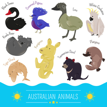 crowned: Set of cute cartoon australian animal icon. illustration for Australia fauna design. Black swan Koala bear tiger shark kangaroo crowned pigeon emu tasmania devil platypus cockatoo white parrot