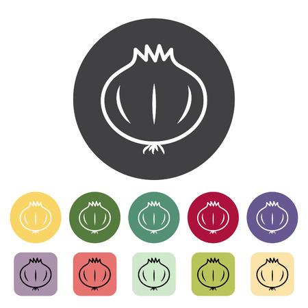 Onion icon collection. Vector illustration. Çizim