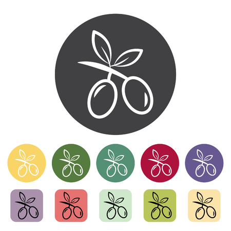 Olive icon collection. Vector illustration.