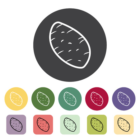 Potato icon collection. Vector illustration.