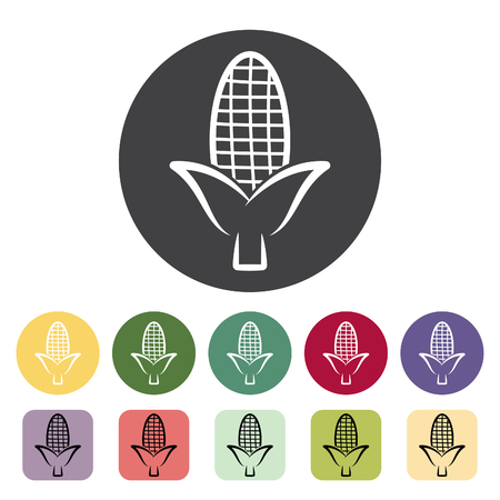 Corn icon collection. Vector illustration.