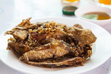 sheatfish: Peces de agua dulce Sheatfish con ajo y pimienta