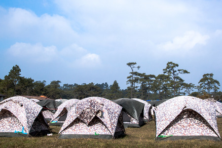 dwell: Many tents at a campsite, National Park