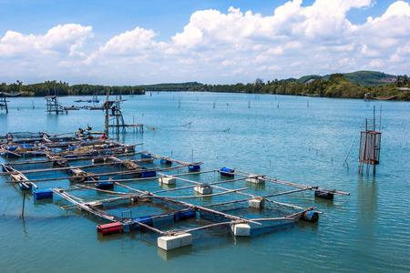 fish rearing: Cage aquaculture farming, Thailand Editorial