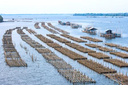 fish rearing: Cage aquaculture farming, Thailand Stock Photo