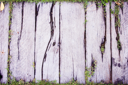 creeper: Vintage wood texture background with green grass Stock Photo