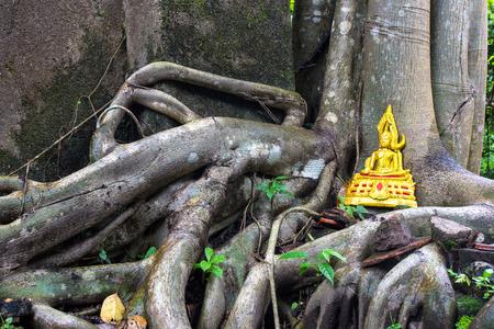 overwhelm: Golden buddha on tree roots overwhelm ancient temple walls, Sangkhlaburi, Kanjanaburi, Thailand