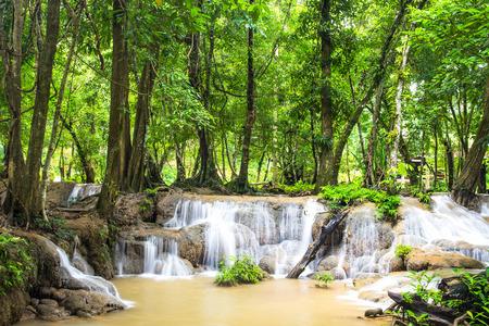 miracle leaf: Keingkravia waterfall at sangkhlaburi, Kanjanaburi. Thailand