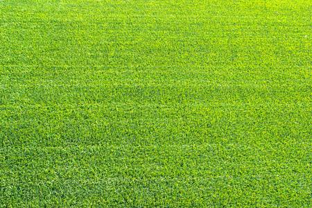 carpet clean: Artificial grass Stock Photo