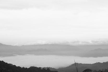 kaeng: Sea of clouds is covering the forest at Panoenthung, Kaeng Krachan National Park, Kanchanaburi. Black and white of image.
