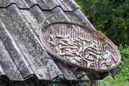 Dried fish on bamboo basket