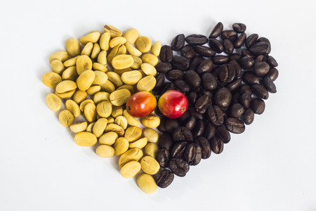 unpicked: white and black coffee bean Stock Photo