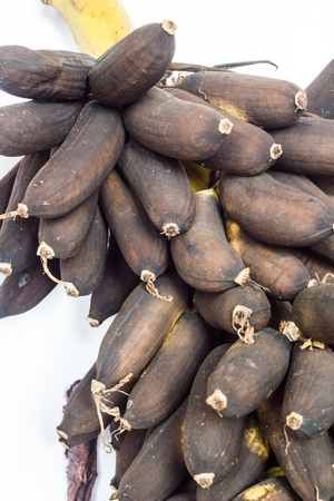rot: bananas rot in garden is animal food.